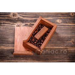 Cutie lemn stick Model: CATEC
